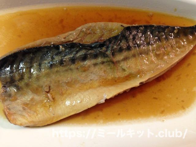 わんまいる 魚