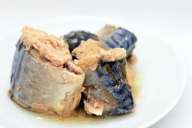 サバ缶を使った料理レシピ4選&メーカー別おすすめのサバ缶【鯖缶に含まれる栄養は?】
