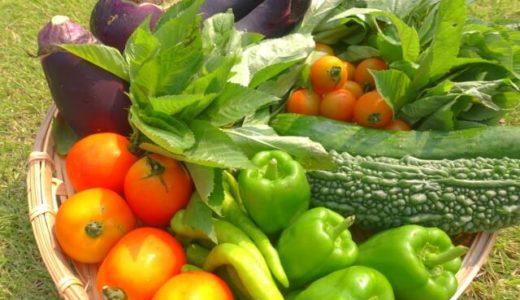 筋トレ中におすすめの野菜は?【低糖質でたんぱく質も摂れる野菜】