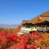 ワタミの宅食は京都で利用できる?配達地域や申込み方法は?